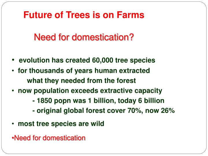 Future of Trees is on Farms
