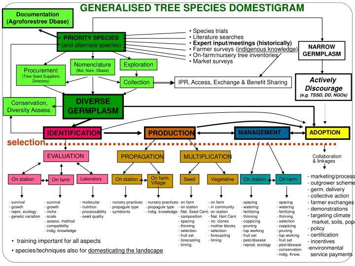 GENERALISED TREE SPECIES DOMESTIGRAM