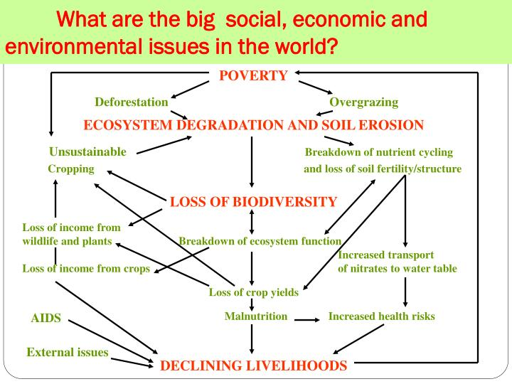 What are the big social economic and environmental issues in the world
