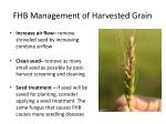 fhb management of harvested grain