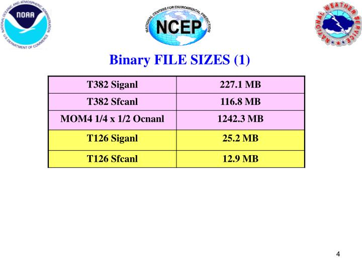 Binary FILE SIZES (1)