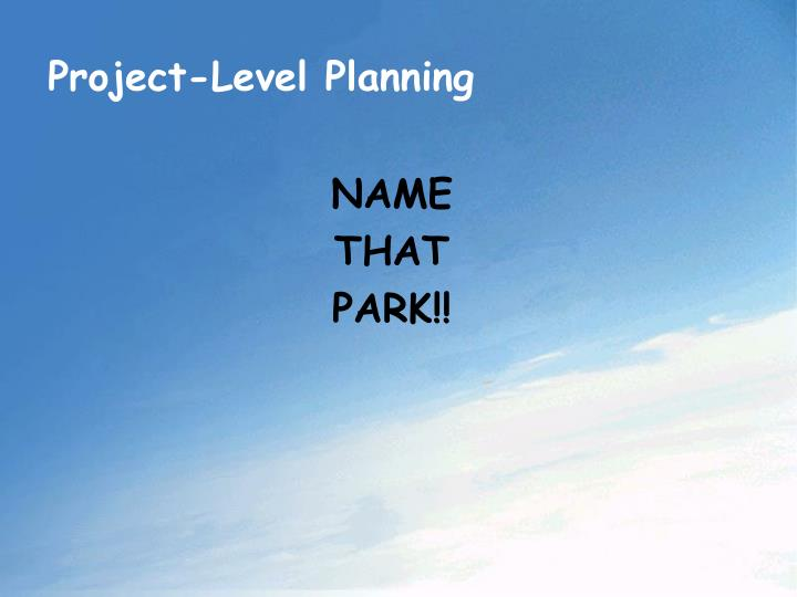Project-Level Planning