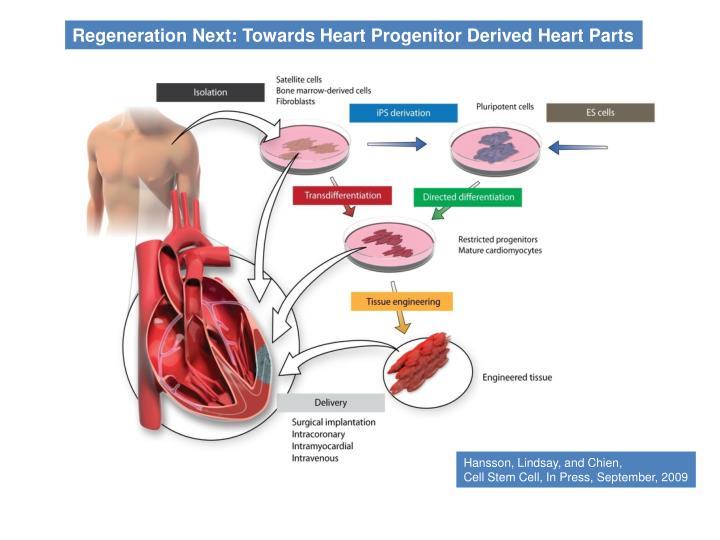 Regeneration Next: Towards Heart Progenitor Derived Heart Parts