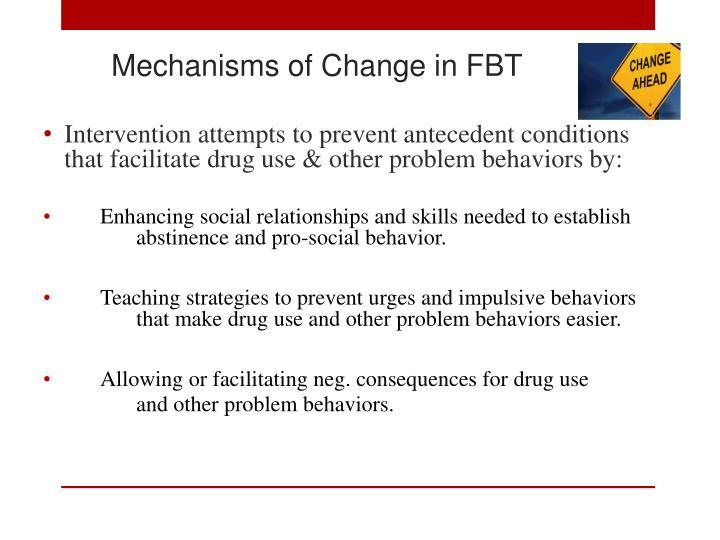 Mechanisms of Change in FBT