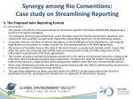 synergy among rio conventions case study on streamlining reporting4