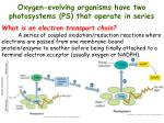 oxygen evolving organisms have two photosystems ps that operate in series1
