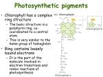 photosynthetic pigments1