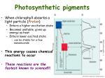 photosynthetic pigments2