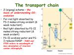 the transport chain