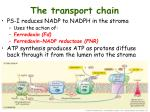 the transport chain2