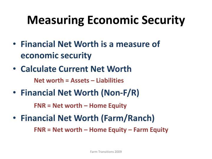 Measuring Economic Security