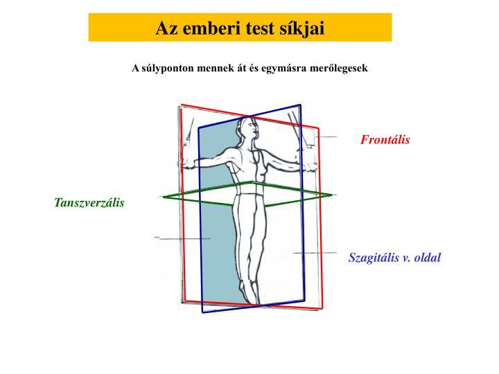 Az emberi test síkjai