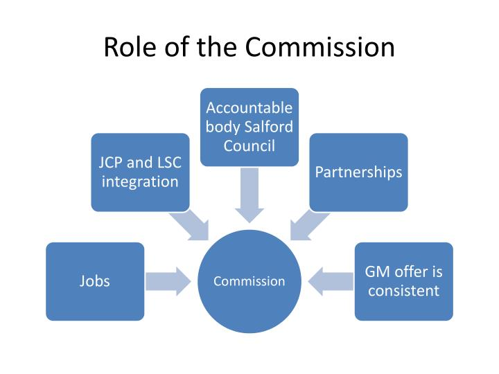 Role of the Commission