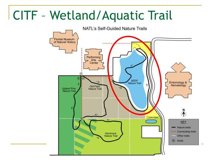 CITF – Wetland/Aquatic Trail