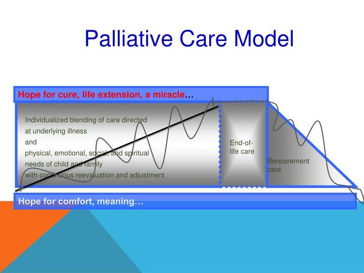 Palliative Care Model