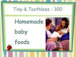 tiny toothless 300