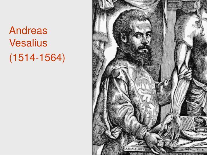 Andreas Vesalius (