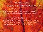 abundant life yeshua is all the parts of a tree