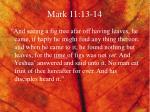 mark 11 13 14