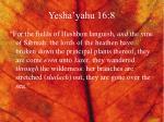 yesha yahu 16 8