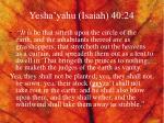 yesha yahu isaiah 40 24