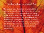yesha yahu isaiah 61 3 4