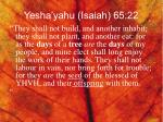 yesha yahu isaiah 65 22