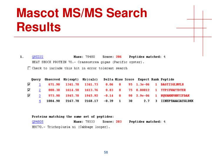 Mascot MS/MS Search Results