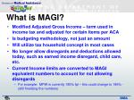 what is magi