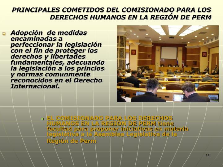 PRINCIPALES COMETIDOS DEL COMISIONADO PARA LOS