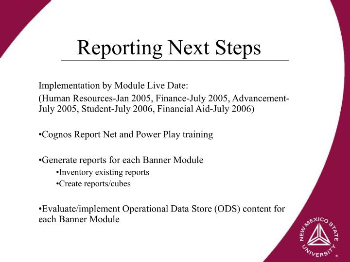 Reporting Next Steps