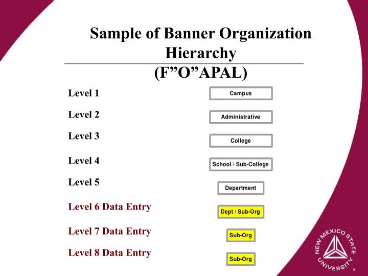 Sample of Banner Organization Hierarchy