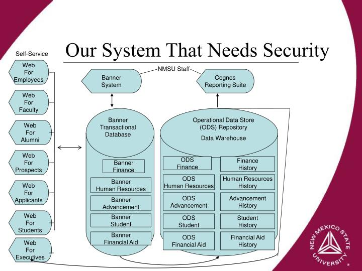 Our System That Needs Security