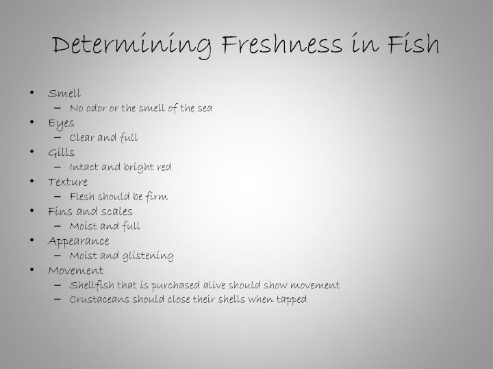 Determining Freshness in Fish