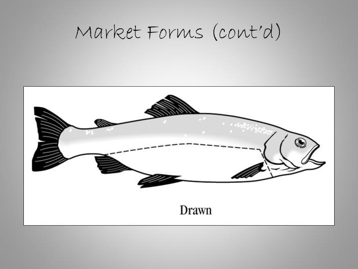 Market Forms (cont'd)