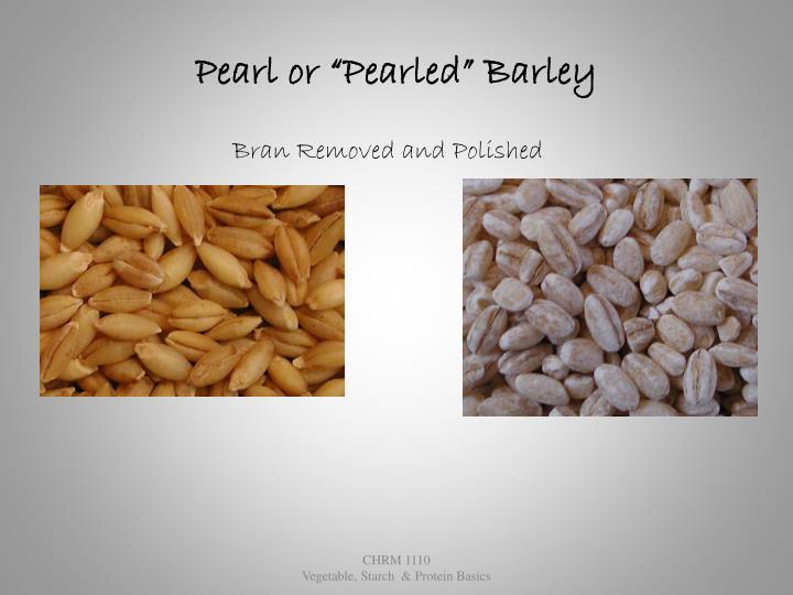 """Pearl or """"Pearled"""" Barley"""