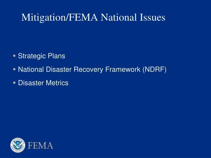 Mitigation fema national issues