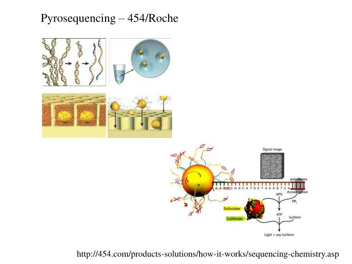 Pyrosequencing – 454/Roche