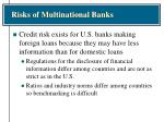 risks of multinational banks1