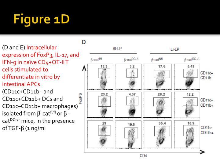 Figure 1D