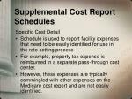 supplemental cost report schedules1