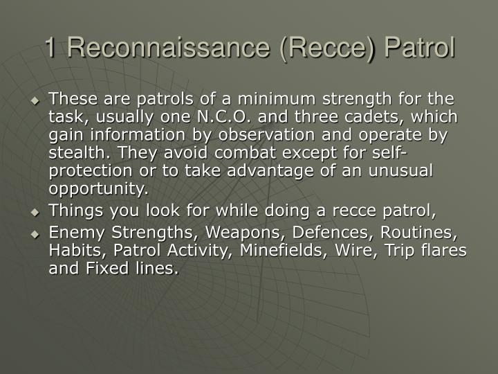 1 Reconnaissance (Recce) Patrol