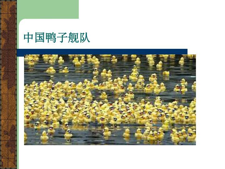中国鸭子舰队
