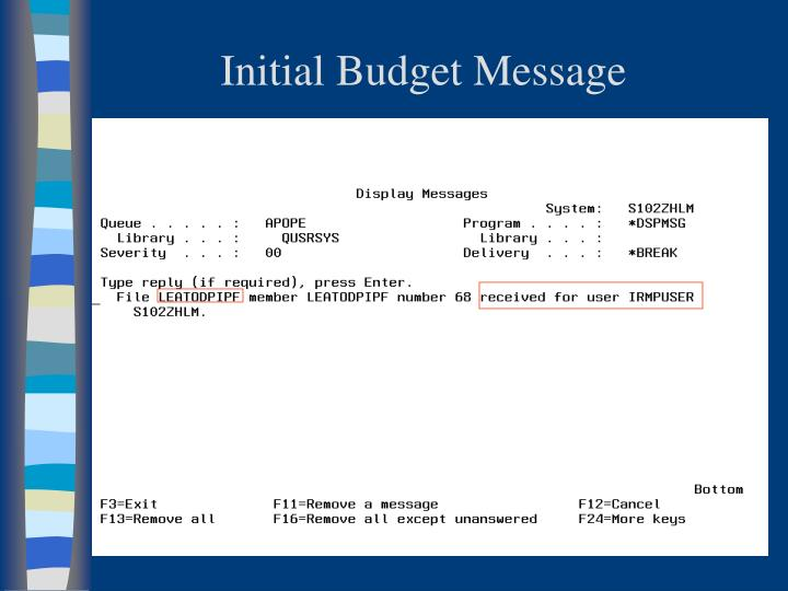 Initial Budget Message
