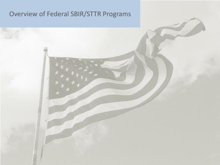 Overview of federal sbir sttr programs