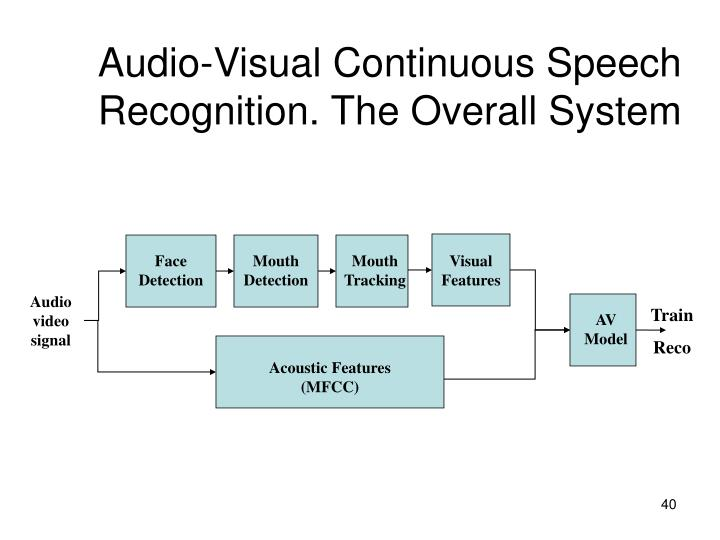 Audio-Visual Continuous Speech Recognition. The Overall System