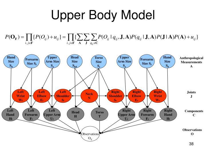 Upper Body Model
