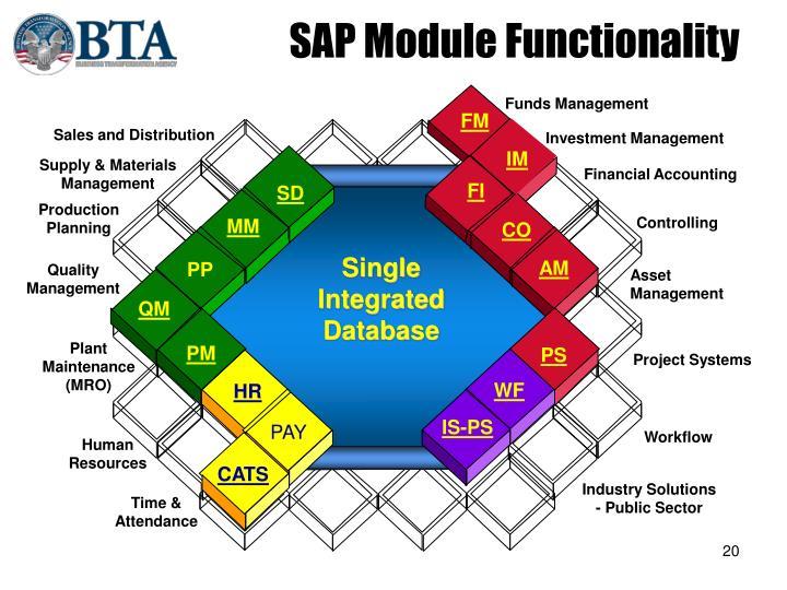 SAP Module Functionality