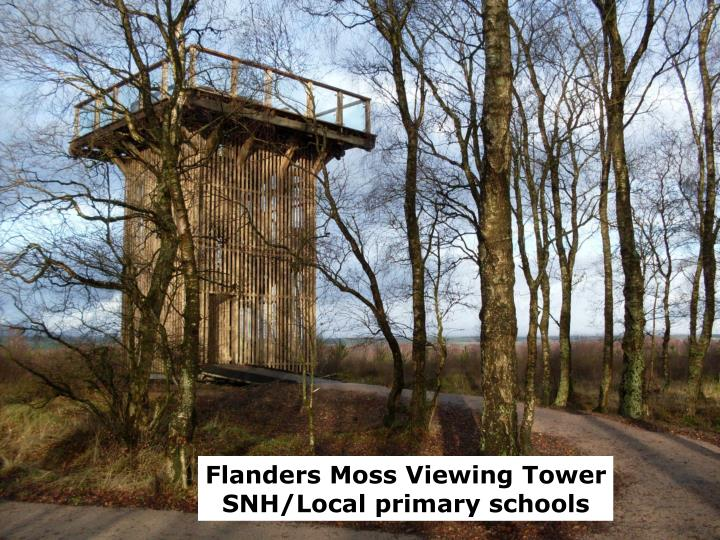 Flanders Moss