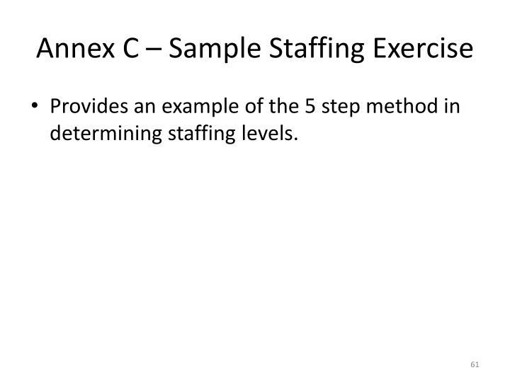 Annex C – Sample Staffing Exercise
